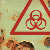 Is Your Culture Toxic? Tell-Tale Signs That Your Company Culture Needs a Re-<em>Boot</em>