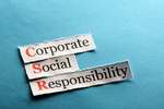 Determining if <em>Corporate</em> Social Responsibility is Best for Your Business