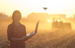 Drones in Precision <em>Agriculture</em> <em>and</em> Crop Management
