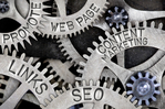 Why Do Small Businesses Shirk SEO?